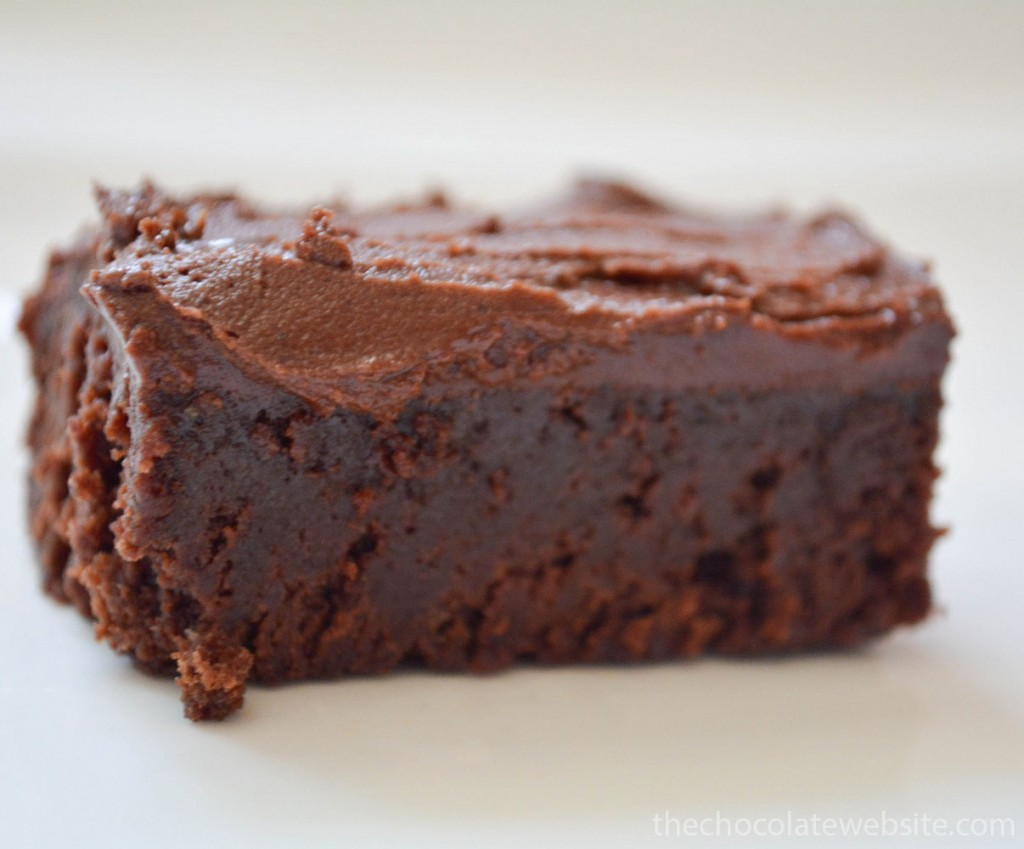 Piece of Whatever Floats Your Boat Brownies with Chocolate Frosting