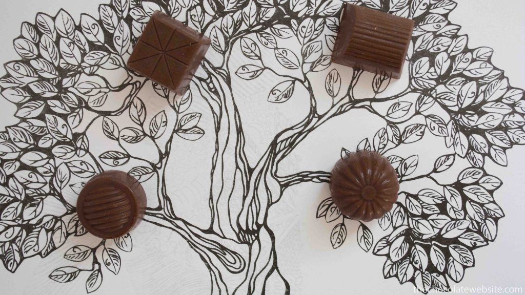 If Chocolate Grew on Trees Photo
