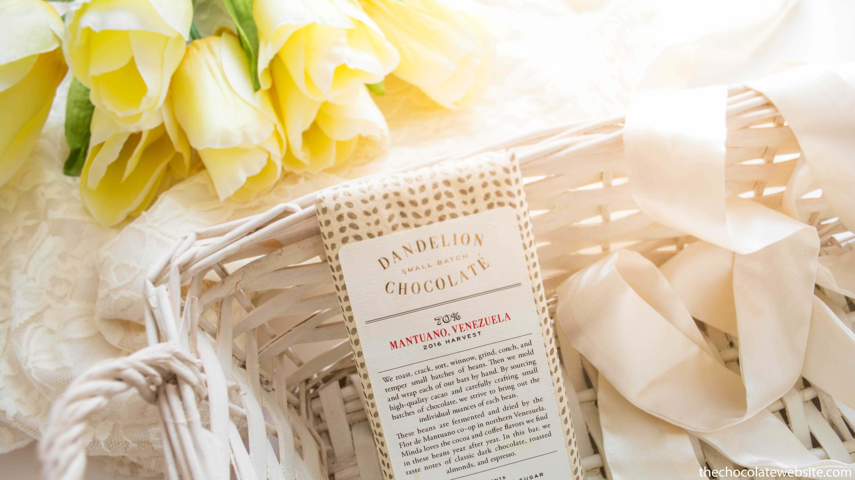 Dandelion Chocolate Still Life Photo